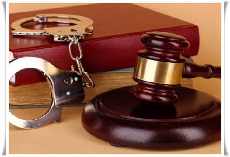 Думаю, работа адвоката по уголовным делам чем меня