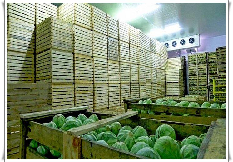 Овощехранилища под ключ в Крыму