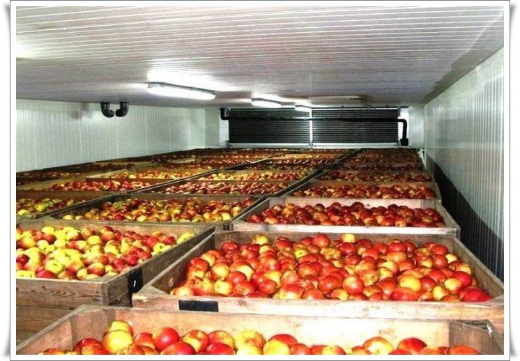 Холодильные установки для склада Крым