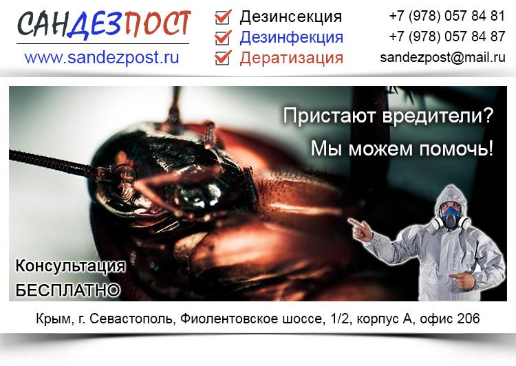 Дезинсекция, дератизация, дезинфекция (Севастополь, Крым)